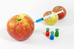 Geneticamente modificato Fotografie Stock Libere da Diritti