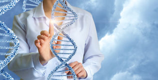 Geneticist working with human DNA. Stock Image
