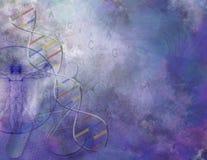 Genetics royalty free illustration