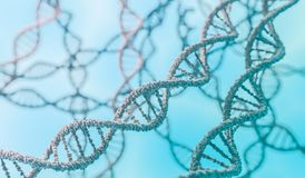 Genetics concept. 3D rendered illustration of DNA molecules.  Stock Image