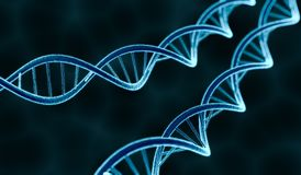 Genetics concept. Glowing DNA molecule on dark background. 3D rendered illustration.  Stock Photo
