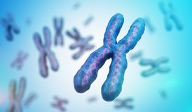 Genetics concept. Many X chromosomes with DNA molecules. 3D rendered illustration.  Stock Photography