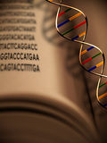 Genetics and DNA The Book of Life. DNA strands floats above a book of genetic code Stock Illustration