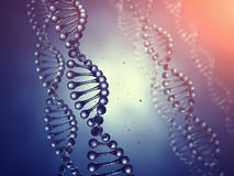 Genetics. Double helix Dna molecules concept , Genetic engineering Royalty Free Stock Photo