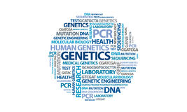 Genetics - word cloud. A word cloud filled with terms relating to genetics/molecular biology Royalty Free Stock Image