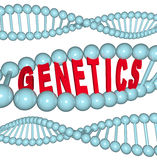 Genetics - Word in DNA Stock Photography