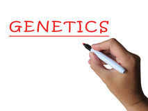 Genetics Word Shows Genetic Makeup And. Genetics Word Showing Genetic Makeup And Anatomy Royalty Free Stock Photography
