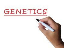 Genetik-Wort zeigt genetische Ausstattung und lizenzfreie stockfotografie