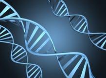 Genetikkonzept, das vergrößerte Doppelhelix DNA-Stränge darstellt Stockfotos