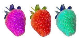 Genetisch gewijzigd voedsel, aardbeien Royalty-vrije Stock Foto's