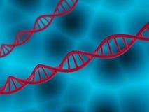 Genetische biologie wetenschappelijk concept Stock Foto's