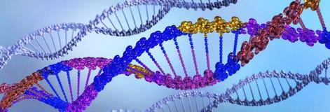 Genetische biologie wetenschappelijk concept chromosoom vector illustratie