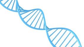 Genetische Daten reihen Konzept eines blauen Doppelhelix DNA-Moleküls, nahtlose Schleife der Animation 3D auf stock video