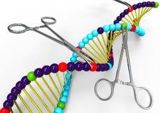 Genetische Handhabung vektor abbildung