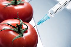 Genetisches Experiment Stockbild