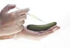 Genetisches Experiment stockfotos