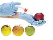 Genetisches Experiment Lizenzfreie Stockfotos