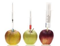 Genetisches Experiment Stockbilder