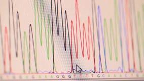 Genetisk chromatogram stock video
