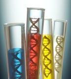 Genetisk kodbehandlig Arkivbilder