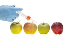 Genetiskt experiment royaltyfria bilder