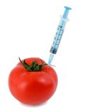 genetyczna modyfikacja Fotografia Stock