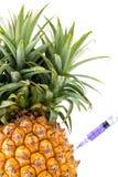 Genetyczna modyfikacja, ananas, owoc, modyfikacja, dziwaczna, s Fotografia Stock