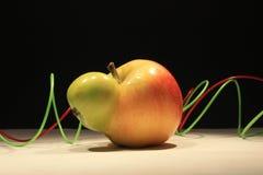 genetycznie Fotografia Stock