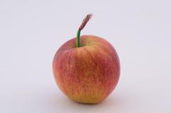 Genetycznie zmodyfikowani produkty Zdjęcia Royalty Free