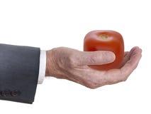 Genetycznie zmodyfikowany warzywo, dużego interesu pojęcie Obrazy Stock