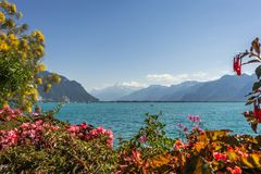 Geneva湖视图 免版税库存照片