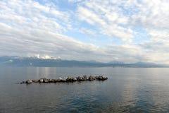 Geneva湖,洛桑,瑞士 免版税库存照片