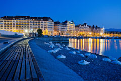 Geneva Cityscape. From a man made beach with swan sleeping at dawn Royalty Free Stock Image