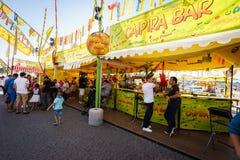 Geneva Festival 2015 (Switzerland). Royalty Free Stock Photography