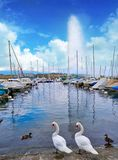 Geneva Geneve lake water Jet D`eau Switzerland. Swiss Leman Stock Images