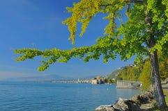 geneva jezioro Montreux Obrazy Royalty Free