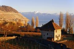 Geneva lake coastline. On the coastline of the geneva lake Royalty Free Stock Photography