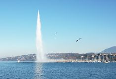 Geneva lake and Jet d'Eau Royalty Free Stock Photo