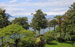 Geneva lake and trees, Montreux, Switzerland. Royalty Free Stock Photography