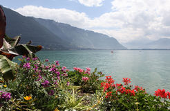 Geneva to Montreux ozero.Vid. Stock Photography