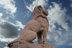geneva tygrys Fotografia Royalty Free