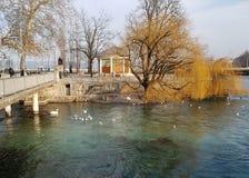 Genewa i Russeau wyspa z ładnymi ptakami zdjęcia royalty free