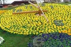 Genf-Blumen-Uhr Stockbild