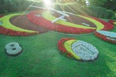 Genf-Blumen-Uhr Stockfotografie