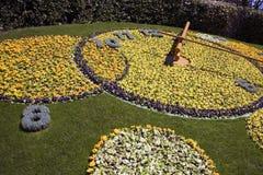 Genf-Blumenborduhr Stockbilder