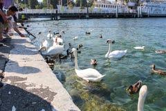 GENF - 7. SEPTEMBER Touristen auf dem Pier zum ikonenhaften Brunnen, der einer von den größten in der Welt ist 132 Gallonen Wasse Lizenzfreies Stockbild