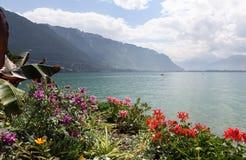 Genf zu Montreux-ozero. Vid. stockfotografie