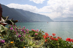 Genfersee. Montreux. Stockbilder