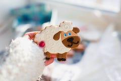 Gengibre das cookies Imagens de Stock Royalty Free