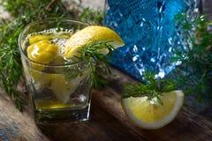 Genièvre avec des tranches de citron images stock